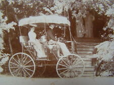 Sarah Winchester? in Fancy Horse Drawn Carriage Photograph San Jose CA 1890's