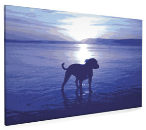 Staffordshire Bull Terrier Box Canvas and Poster Print (76)