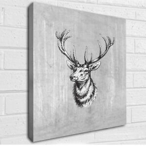 Vintage grey Stag canvas art picture