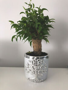 Large Silver Tree Of Life Planter Plant Holder Pot Metal Artificial Flowers 13cm