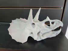 Triceratops Skull Replica dinosaur Fossil Sculpture Hand Painted jurassic dino