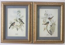 "Pair of Vintage John Gould Mid-Century Bird Prints, Framed, Matted, 10"" x 13"""