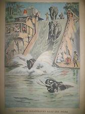 INDE BAIGNADE ELEPHANTS BREST LAME DE FOND NOYADE JOURNAL LE PETIT PARISIEN 1906
