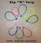 60 Large Zip N Snip Poultry Leg Bands Turkey, Geese, Ducks