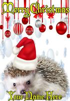 Hedgehog nnc55 Christmas Card Xmas A5 Personalised Greetings Card