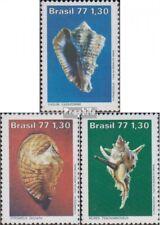 Brasilien 1604-1606 (kompl.Ausg.) postfrisch 1977 Meeresschnecken