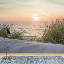 11597 VLIES Fototapete-DÜNEN- -Strand Gras Sand Nordsee Ostsee Sonnenuntergang