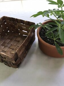 """small low Square shaped basket Brown Woven home decor storage 5.5"""" X 5.5"""" X 3"""""""