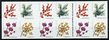 USA US Stamps 2019 MNH Winter Berries Juniper Soapberry Plants 20v S/A Booklet