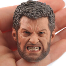 """1:6 Wolverine Angry Face Version Head Model Toy For 12"""" no neck Body Model"""
