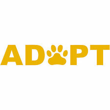 """ADOPT A Pet Paw Rescue 4"""" Decal Sticker Save a Life Dog Puppy Cat Kitten Kitty"""