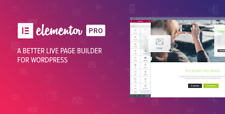 Elementor Pro 341 New Version Wordpress Page Builder Activated