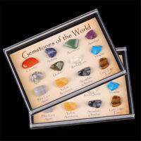 15pcs Natural Crystal Gemstone Polished Healing Chakra Stone Collection Display