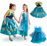 Frozen Fever Dress Costume Elsa Anna FANCY costume blue Haloween Christmas Party