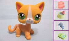 "LITTLEST PET SHOP RARE #72 YELLOW CAT ""ANGELINA DAVIS"" +1 FREE Access. Authent"