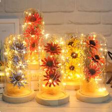 Modern Dried Flowers In Glass Bottle Handmade MicroLandscape Wedding Decor Gifts