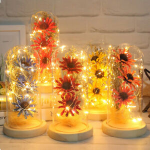 LED Beauty/Beast Eternal Rose Flower Light Up In Glass Dome Xmas Valentines Gift