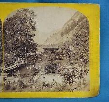 1860s Suisse Stereoview 109 Vallee De Lauterbrunnen Alpine Club England