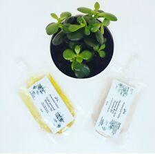Hyaluronic Acid Serum 50ml & Marula Oil Anti Aging 50ml Aussie refill packs