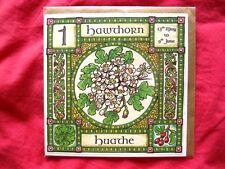 Al Biancospino ALBERO greeting card 13 maggio-giugno 9o celtica pagane COMPLEANNO wiccan
