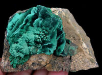 136g Rare Special Natural Malachite flowers on Matrix Crystal Mineral Specimen