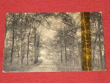 Antique Roadway in Thompsons's Park, Sea Cliff, LI Postcard