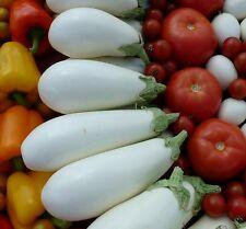 ☺ 20 graines d aubergine blanche