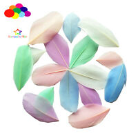 New 100 Pcs Macaron Light color mixture Goose feather Round head 2-3 Inch/5-7 Cm
