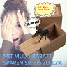 Hölzerner Schrecken-Kasten der Streich-Spinne scherzt erwachsenes Spielzeug