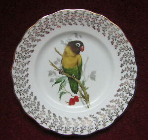 Lovebird on Branch  Collector plate Liverpool rd pottery Stoke on Trent