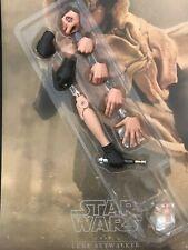 Hot toys Star Wars Luke Skywalker MMS517 Return Jedi Endor- 1/6th scale hand set