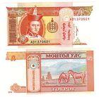 MONGOLIE MONGOLIA Billet 5 TUGRIK 2008 P53 CHEVAL NEUF UNC