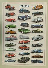 JAGUAR CARS THROUGH TIME BY N.CARREGA,RARE AUTHENTIC 1993 POSTER