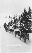RPPC DOG SLED TEAM YUKON TERRITORY ALASKA REAL PHOTO POSTCARD (c. 1920s)