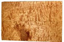 "Quilted Maple🍁Billet Big Leaf 20""x13""x.85"" Carve Top Figure2Pc🎸guitar KD Quilt"