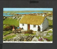 John Hinde Postcard Thatched Cottage Connemara Co. Galway Ireland Unposted