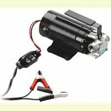 NEW WAYNE PC1 12 VOLT PORTABLE TRANSFER PUMP KIT UTILITY SALE 0928432