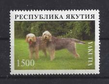 Dog Photo Body Portrait Postage Stamp Otterhound Otter Hound Yakutia Mnh