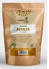 Bio ALFALFA graines pour germination Plantation-Growing choux organically Grown