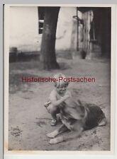 (F13331) Orig. Foto Kind Ursula mit Hund a.d. Hof i. Landsberg / Warthe 1929