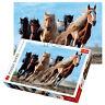 Trefl 1000 Piece Adult Large Gallopping Horses Desert Run Jigsaw Puzzle NEW