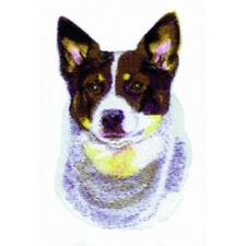Embroidered Short-Sleeved T-shirt - Australian Cattle Dog Bt3606 Size S - Xxl