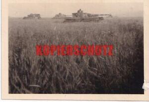 Tiger und Panzer IV  der s.Pz.Abt.502  in Russland 1943