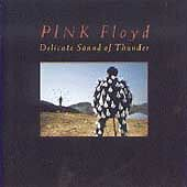 Pink Floyd - Delicate Sound of Thunder (Live Recording, 1988) 2 x CD