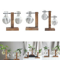 3Pcs Vintage Hydroponic Vase, Terrarium Planter Glass Vase with Retro Wooden