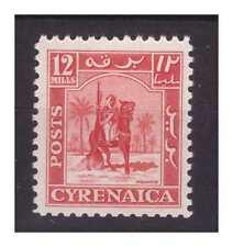 CIRENAICA  AMMINISTRAZIONE AUTONOMA  1950 - CAV. SENUSSITA 12 Mills  NUOVO **