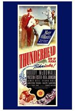 THUNDERHEAD - SON OF FLICKA Movie POSTER 27x40 Roddy McDowall Preston Foster