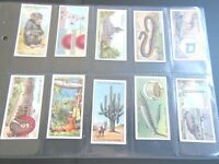 1933 Tobacco Card Set, WD & HO Wills, DO YOU KNOW, Interesting Facts, 4th Series
