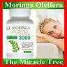 1 BOTTLE OF NATURAL ORGANIC SUPERFOOD pure Moringa Oleifera Vegetarian 60 Doses