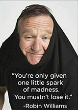 """You're only given one little spark."" Robin Williams Quote fridge magnet   (ep)"